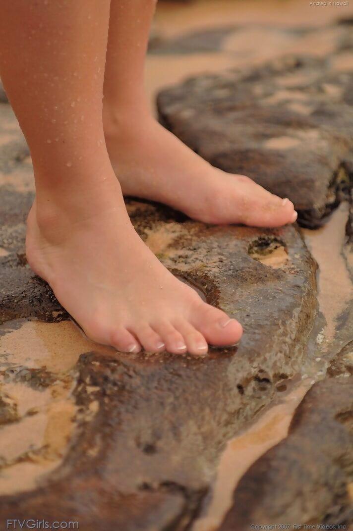 Devon neukt in het zand